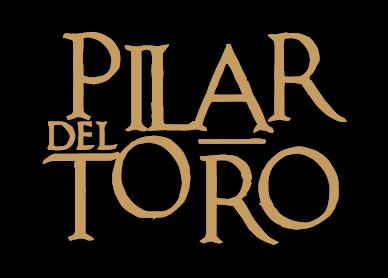 Logo Pilar del toro