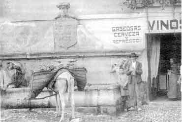 pilar-del-toro-historia